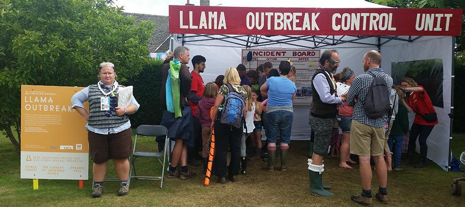 llama outbreak at Greenman Festival
